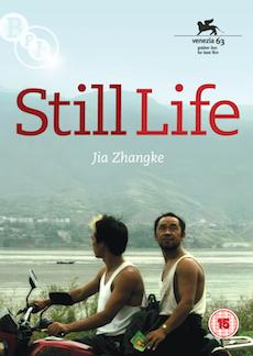 Buy Still Life