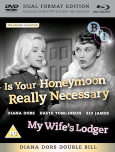 Buy Is Your Honeymoon Really Necessary? + My Wife's Lodger