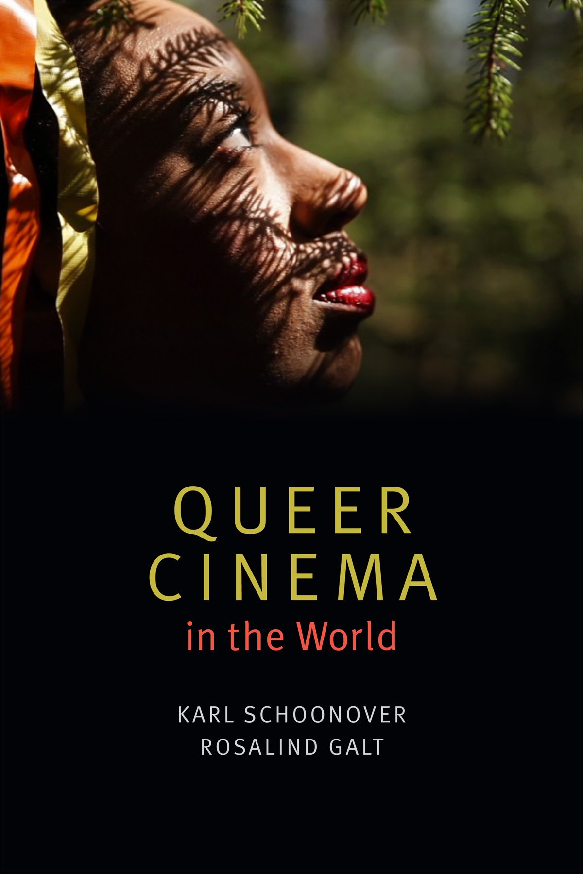 Buy Queer Cinema in the World