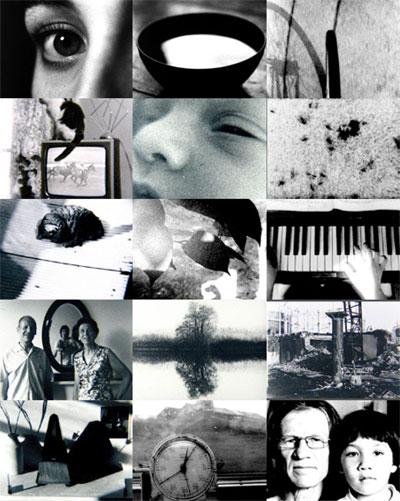 Buy Short Film Series 1974 - 2014 - Guy Sherwin