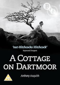 A Cottage on Dartmoor (DVD)