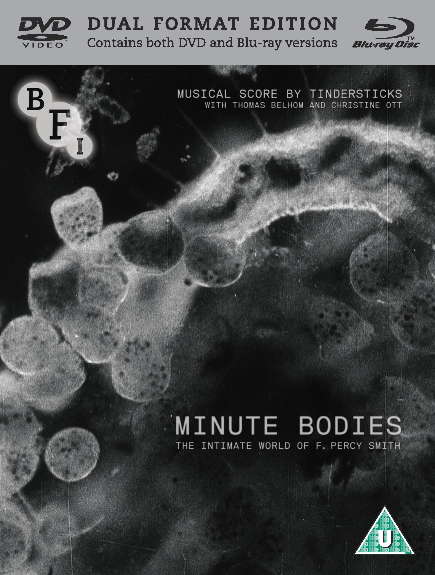 Buy Minute Bodies: The Intimate World of F. Percy Smith